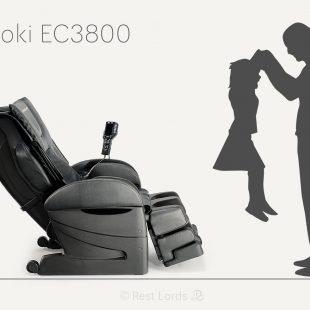 Fujiiryoki EC-3800 in numbers